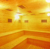 saunawebseihoukei261